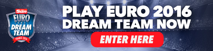 DREAM TEAM DT EURO BANNER 742