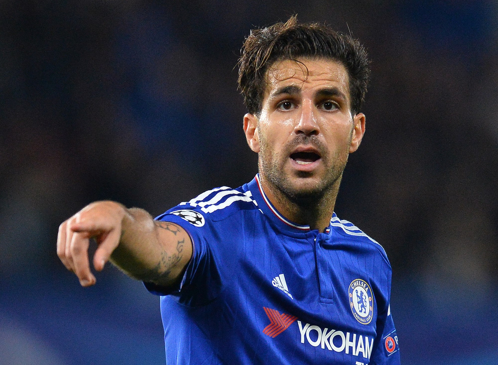 Chelsea's Spanish midfielder Cesc Fabregas gestures during the UEFA Champions League, group G, football match between Chelsea and Maccabi Tel Aviv at Stamford Bridge in London on September 16, 2015.    AFP PHOTO / GLYN KIRK        (Photo credit should read GLYN KIRK/AFP/Getty Images)