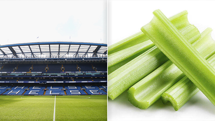 Here S Why Eating Celery At Chelsea Could Get You Banned