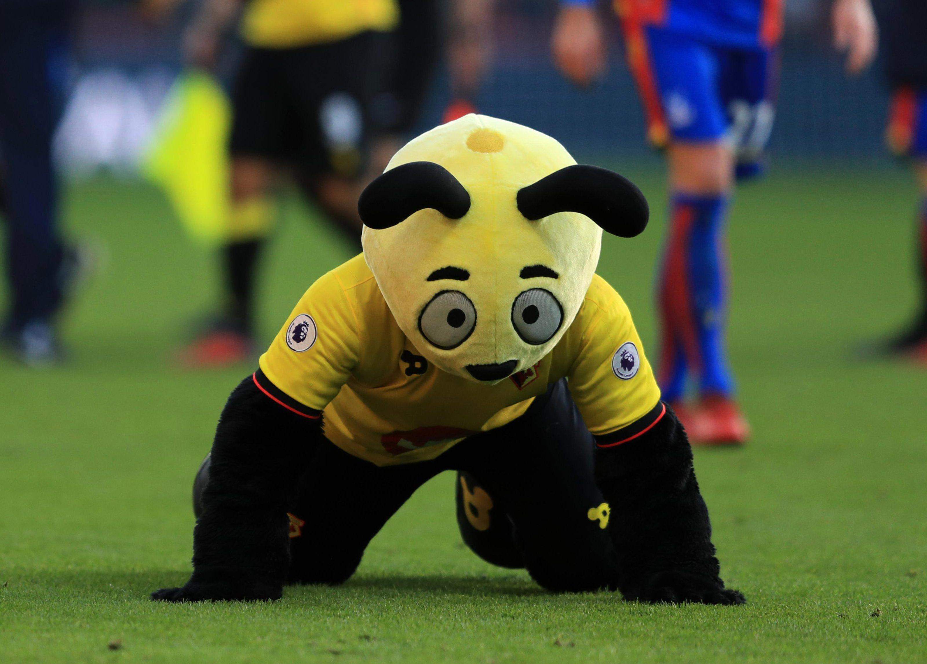 Zaha's alleged diving against Watford led to the Hertfordshire club's mascot Harry the Hornet simulating a dive