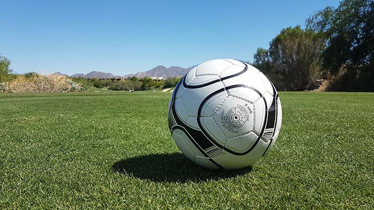 My hire ball. It isn't an Adidas Speedcell, it's fair to say