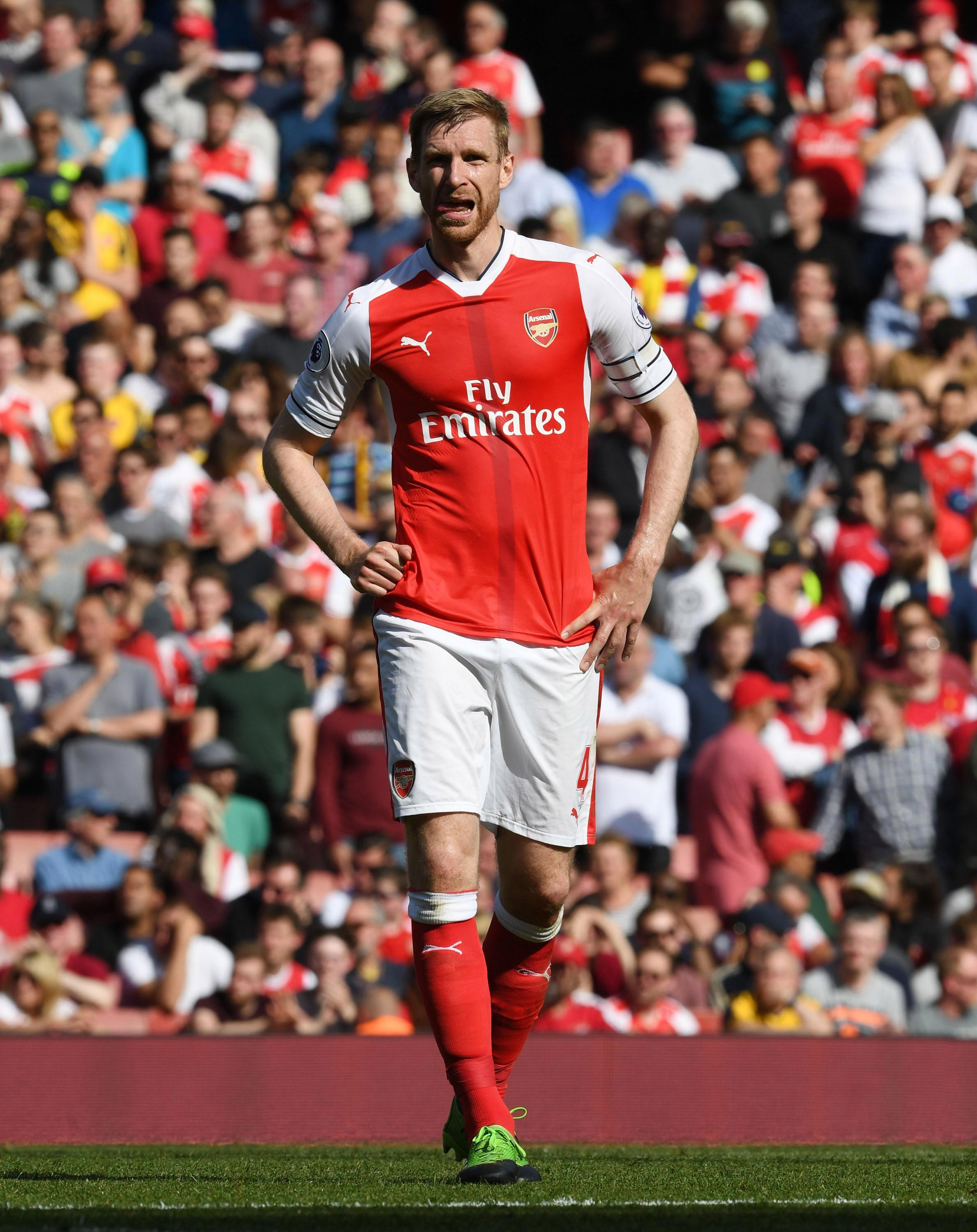 Per Mertesacker looks like he will be lacing up his boots for his first start of the season