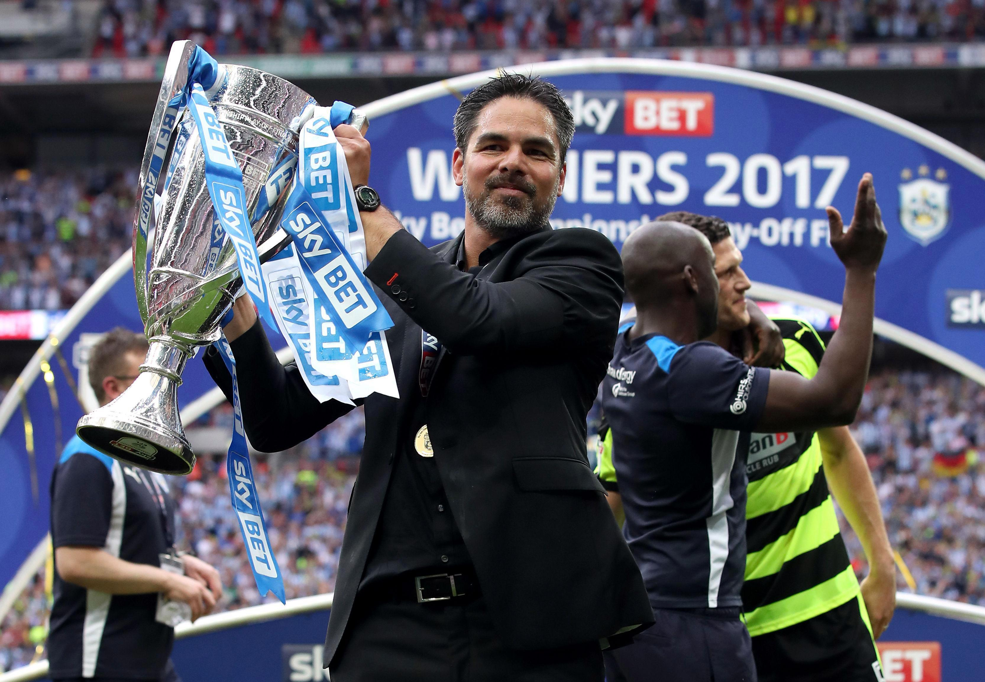 Huddersfield boss David Wagner will have to put together a squad on a limited budget