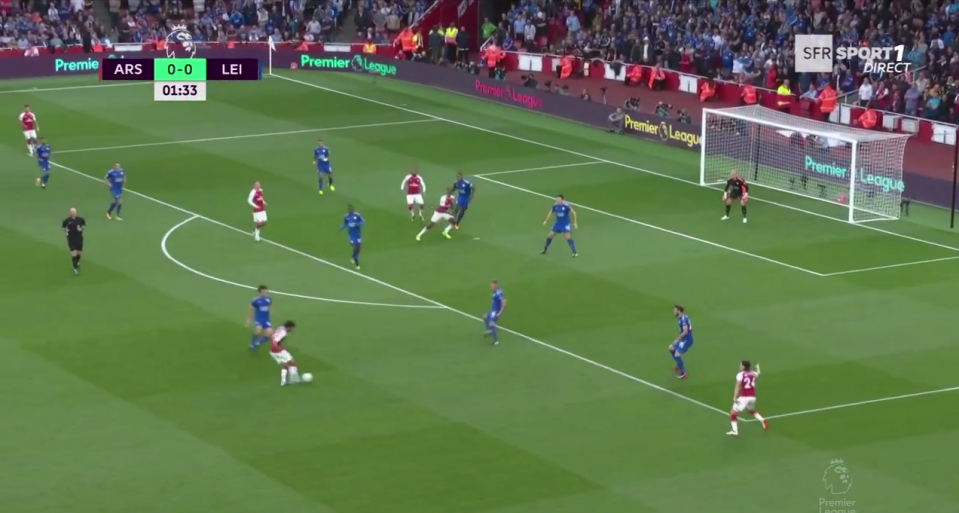 Elneny curled in an inviting cross