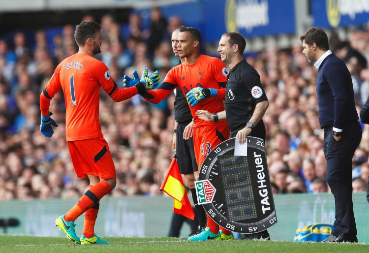 An actual Michel Vorm entering the field of play