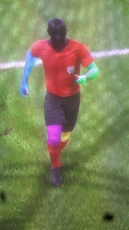 Referees are being generated with randomly coloured limbs