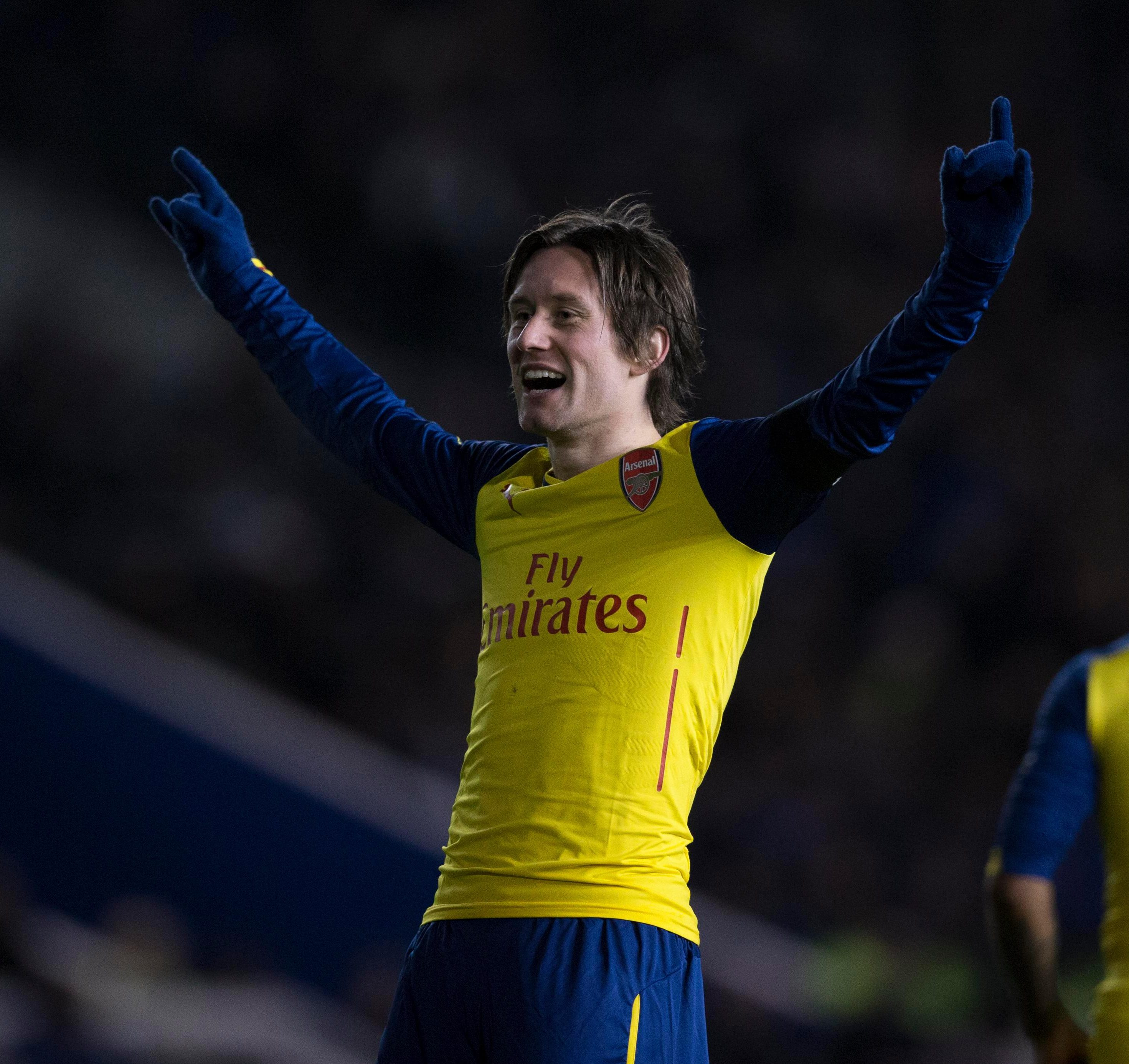 Rosicky endured an injury-stricken spell with the Gunners