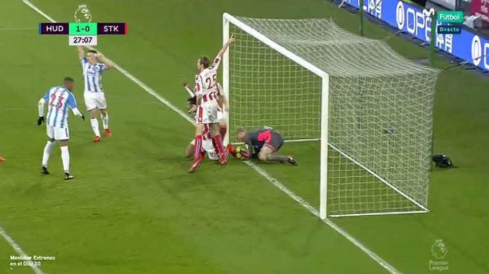 The Stoke players appealed but the referee received no indication from goalline technology that it was a goal