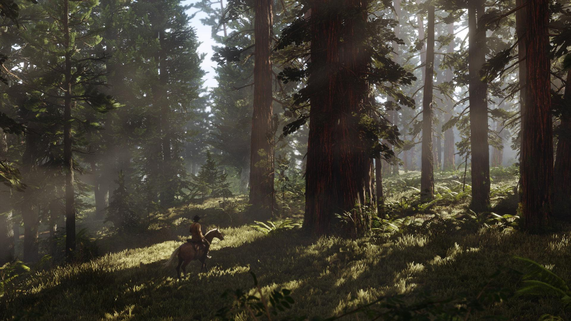 The map will be varied with forest, swamps and mountains