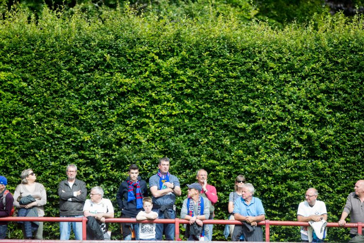 Brechin City are the only club in Europe with a hedge down one side of the pitch