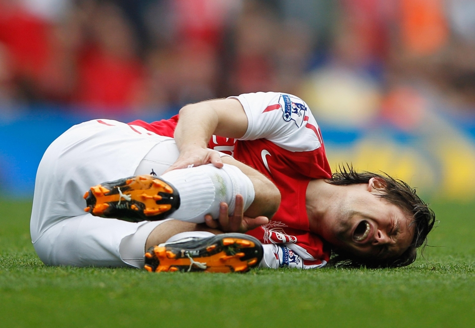 Arsenal fans were left thinking what could have been if Rosicky stayed fit