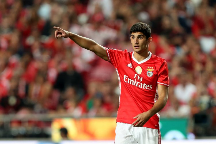 One of many stars born out the Benfica academy