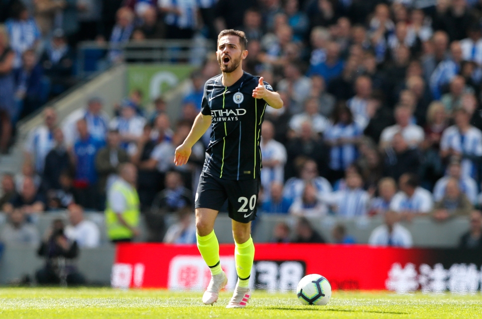 Bernardo Silva is just one of several players worthy of individual praise